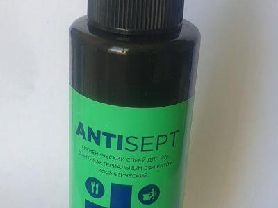 ANTISEPT Антибактериальный спрей для рук, 100мл