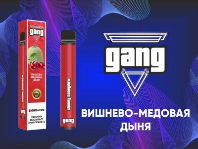 GANG Электронная сигарета Вишня дыня