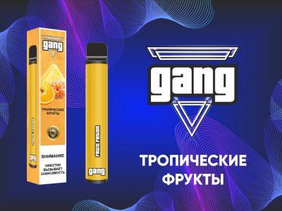 GANG Электронная сигарета Тропические фрукты